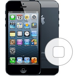 iphone home button fell off iphone 5 home button repair in amp mail in repair 1217